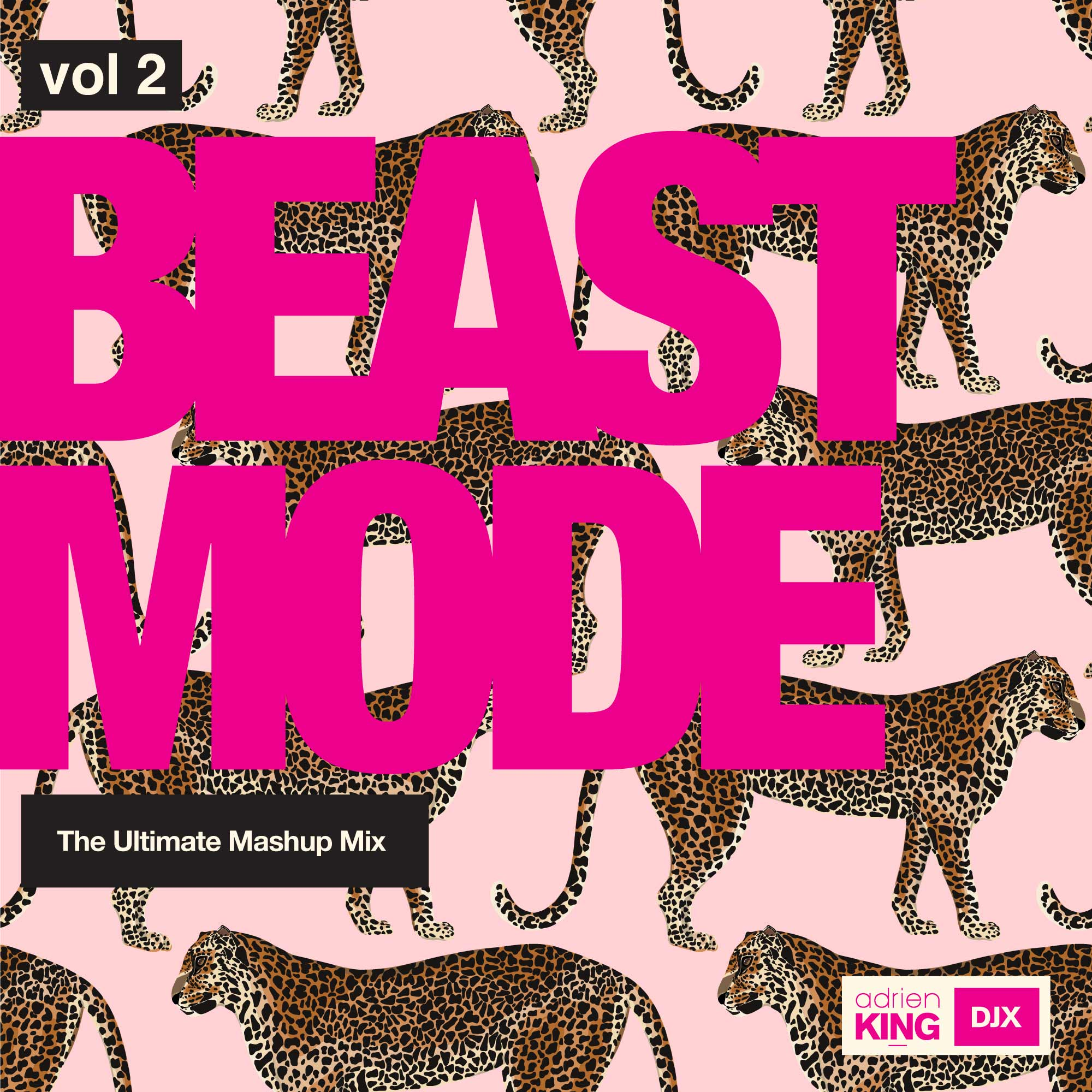Beast Mode – The Ultimate Mashup Mix Vol 2